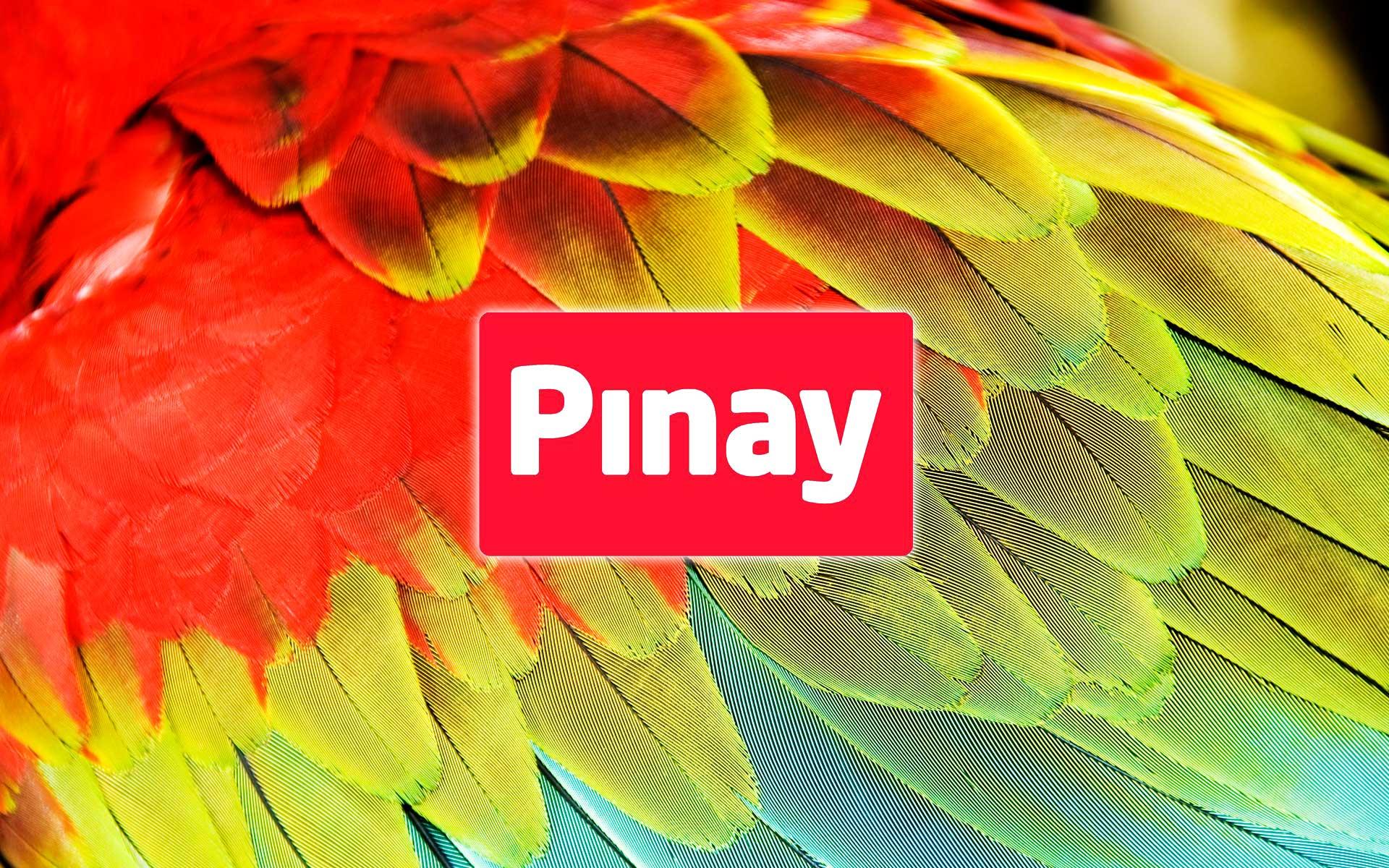 Pinturas Pinay